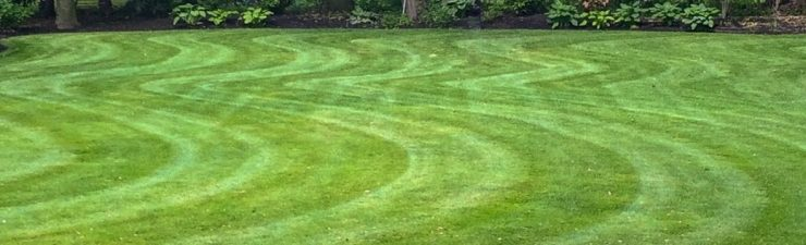 mowed curvy striped lawn