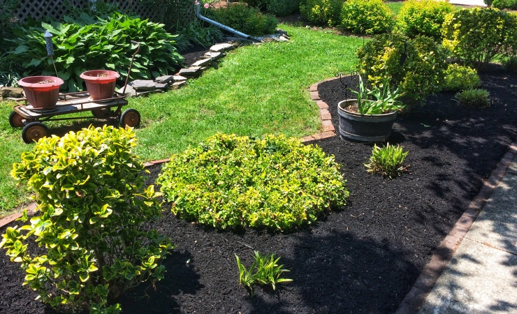 Color enriched mulch garden