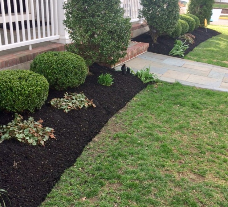 mulch and shrub pruning