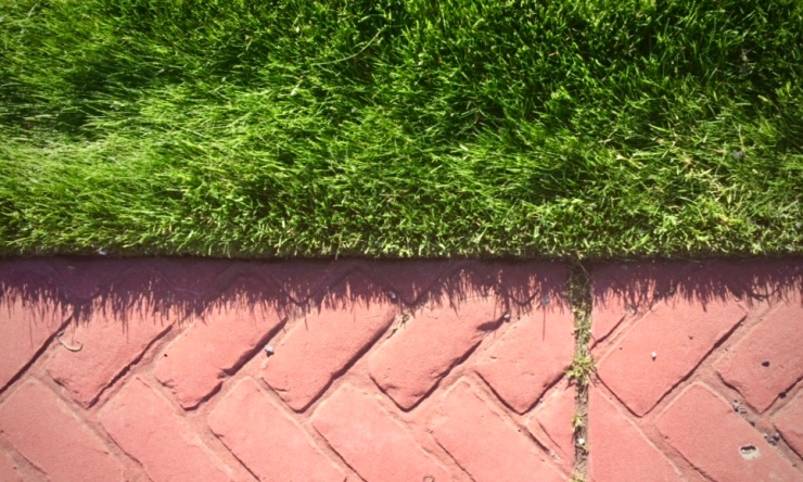definition between lawn and brick creates contrast