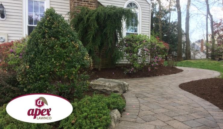 pruning and mulching