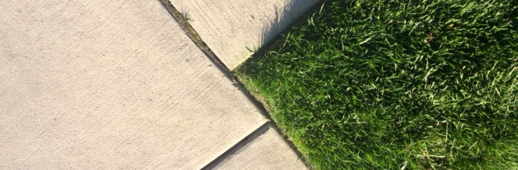 lawn mowing and edging