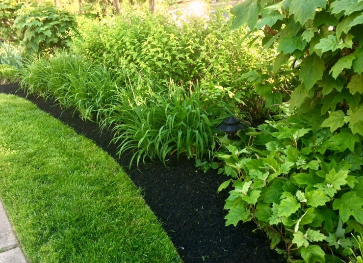 Mulched planting beds