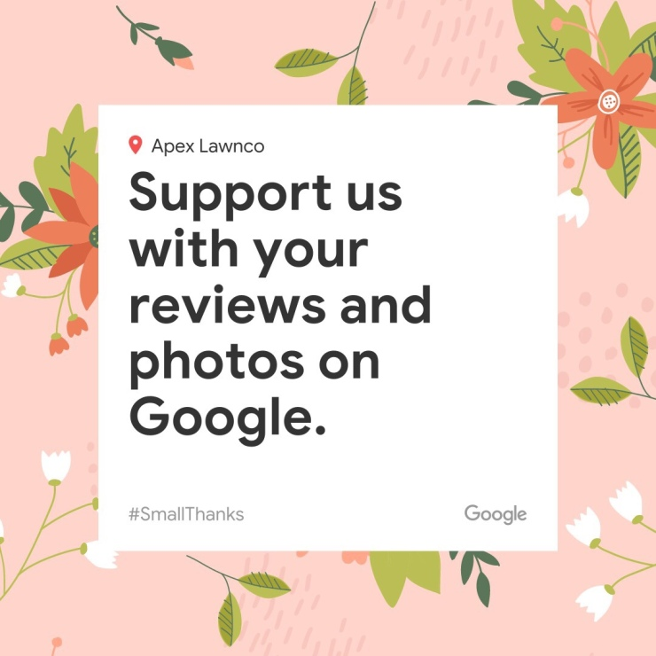 support us with reviews on google