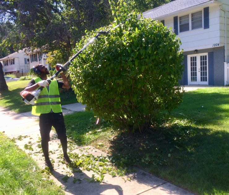crewman shrub pruning