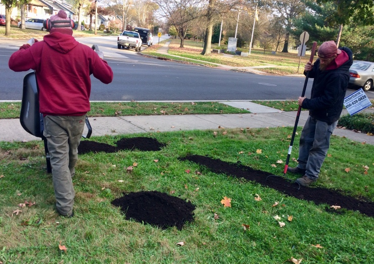 adding topsoil to level lawn flat