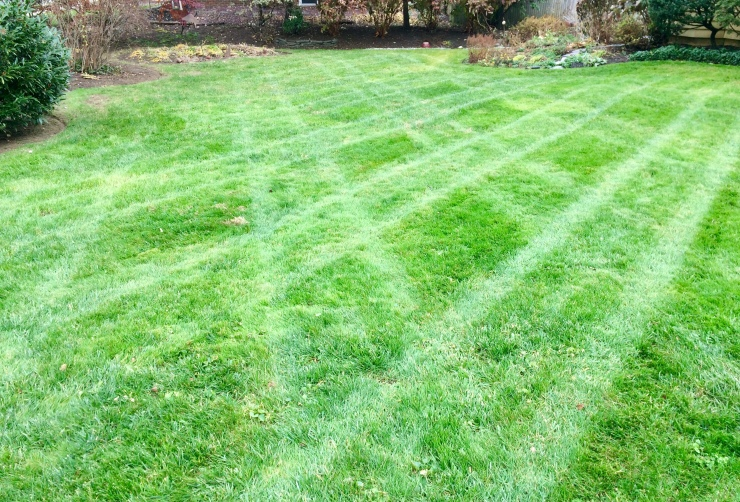 Lawn striping for holidays