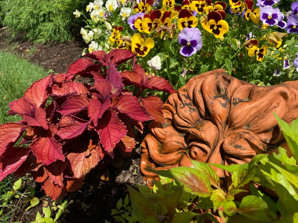 Seasonal annuals flower installation