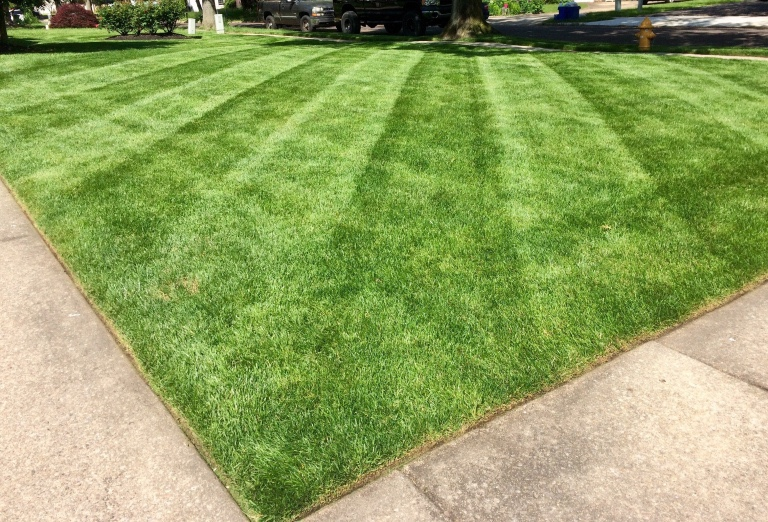 Weekly lawn cut and edging in Haddonfield